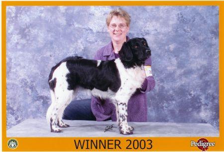 sietse_winner_bob1